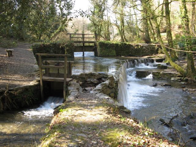 Cotehele Mill, Weir