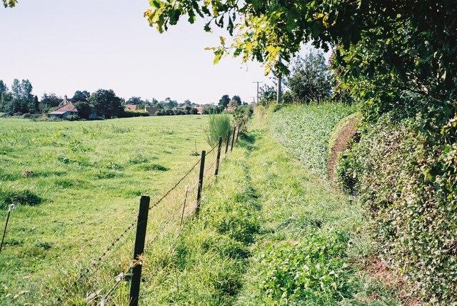 Footpath to Friston