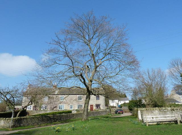 Thornley Village, County Durham