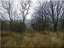 NS2374 : Spango Valley railway bridge by Thomas Nugent