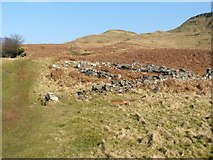 NS4277 : Disused sheepfold by Lairich Rig