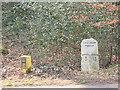 TQ4298 : Milestone on Golding's Hill, near Loughton by Stephen Craven