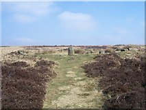 SK2775 : Stone circle and cairn by Martin Speck