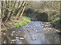 SP0178 : River Rea From The Ford, Mill Walk, Northfield. by Roy Hughes