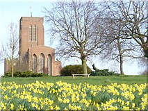 SU9850 : Spring at Guildford Cathedral by Colin Smith