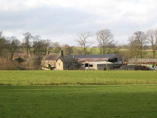 Black Carts Farm (3)