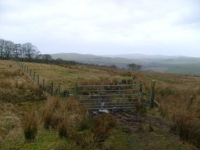 Gate above Pinmore Mains