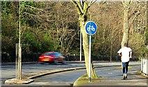 J3371 : Cycle lane, Belfast (1) by Albert Bridge