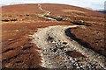 NN9478 : Moorland track by wrobison