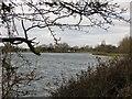 SP9113 : Startops Reservoir in Buckinghamshire by Chris Reynolds