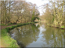 SU9948 : The River Wey and footpath on west bank by Nick Smith