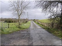H6160 : Knockonny Road by Kenneth  Allen