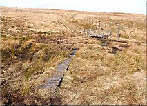 NT7707 : Boardwalk and gate at Coquet Head by Oliver Dixon