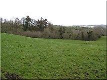 H6359 : Killymorgan Townland by Kenneth  Allen