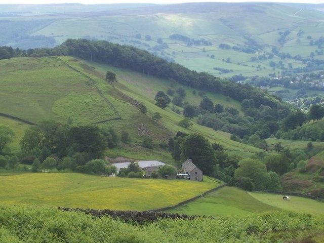 Mitchell Field Farm