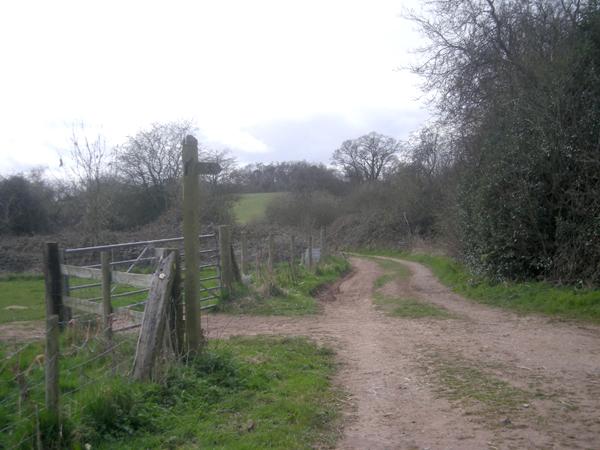 Meeting of several farm tracks