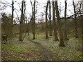 SD8632 : Footpath, Rowley Park by Alexander P Kapp