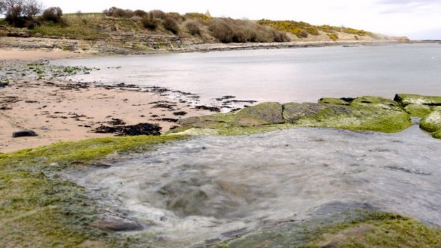 Natural spring bubbles out of sea-side rocks, south side of Howick Burn bay