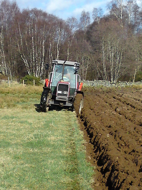 Ploughing at Birkenhill