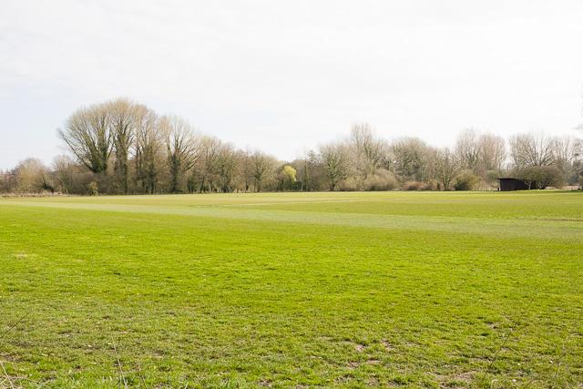 Gater Field