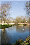 SU4828 : River Itchen south of Winchester College by Peter Facey