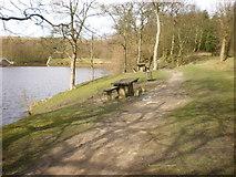 SD8632 : Picnic tables beside Rowley Lake by Alexander P Kapp