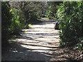 SY9995 : Roman Road, Broadstone by John Palmer