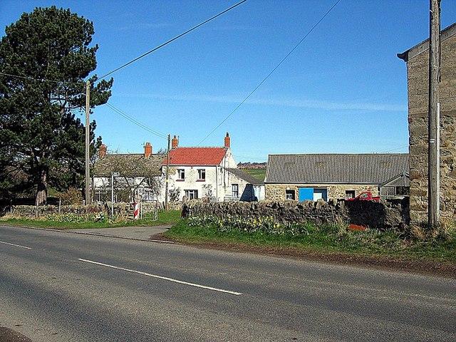 Primrose Side Farm