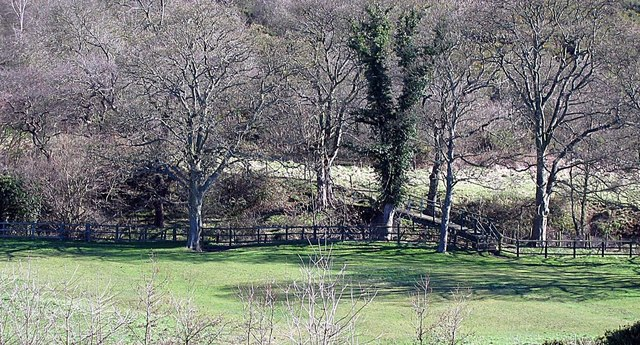 Footbridge across the River Deerness