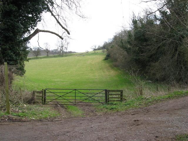 Bridleway, gate, field and woodland