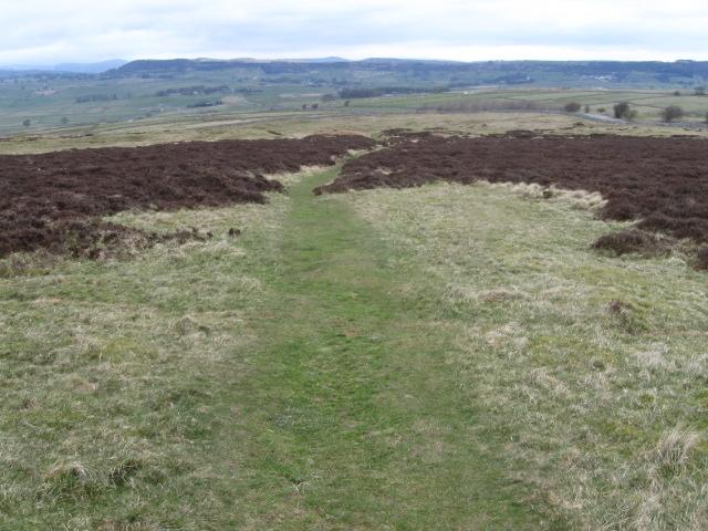 Footpath on Longstone Moor