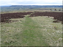 SK1973 : Footpath on Longstone Moor by Chris Wimbush