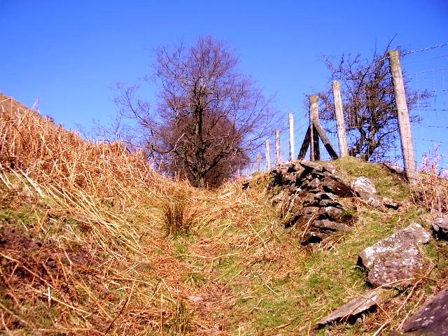Boundary between farmland and open hillside