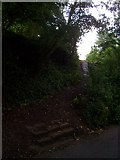 SS9412 : Tiverton : Steps from Churchill Road to Bakers Hill by Lewis Clarke