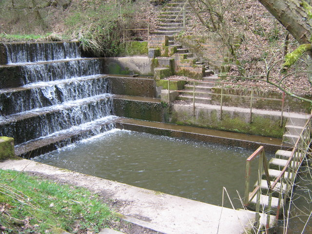 "Upper weir and ""stepping stones"", Deep Hayes Country Park"
