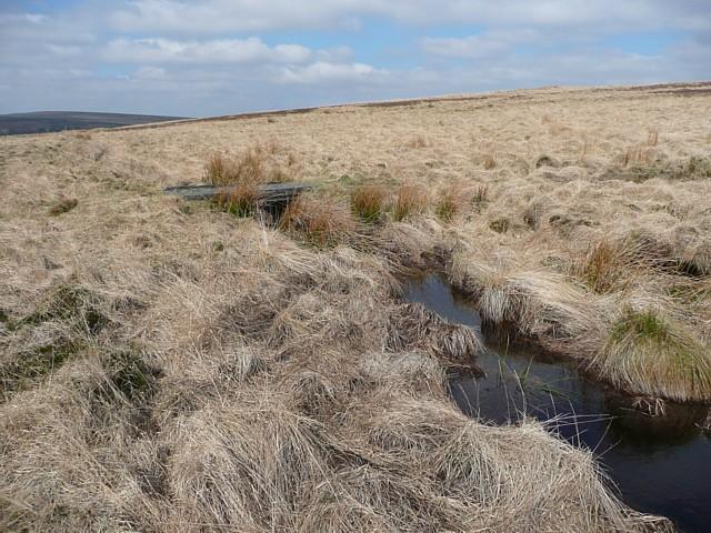 Catchwater channel and footbridge, Warley Moor