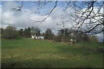SD3398 : Tenter Hill from Hawkshead Hill by David Long
