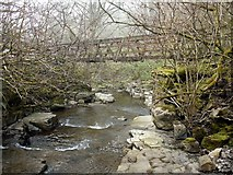 NY9038 : Footbridge, Middlehope Burn by Andrew Curtis