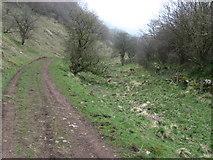 SK0955 : Footpath near Wettonmill by Chris Wimbush