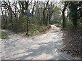 SY9995 : The Roman Road by John Palmer