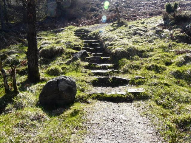 Path up Carn na Leitire.
