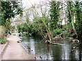 SP8608 : Wendover Arm: Fallen Tree in the Canal by Chris Reynolds