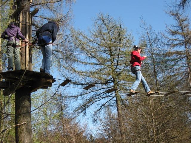 Guildford-wild-wood-adventure