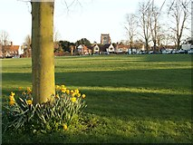 TL6706 : The village green at Writtle by Robert Edwards