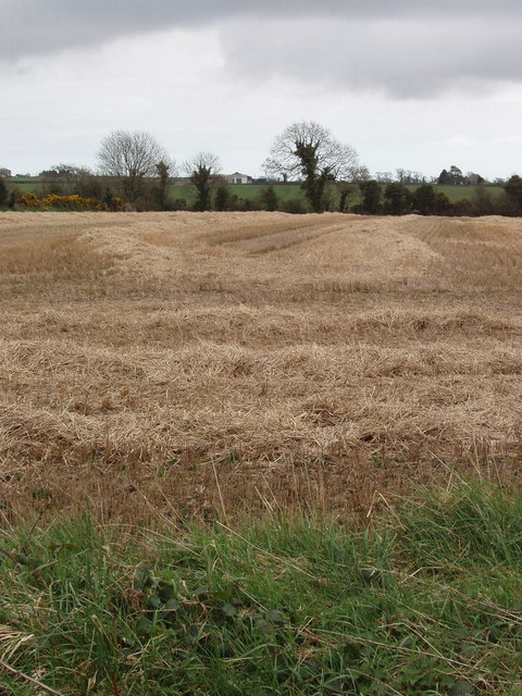 Field with stubble and straw near Garryvarren