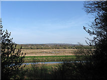 TQ0215 : View over Waltham Brooks by Simon Carey