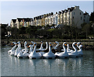 J5082 : The Pickie swans, Bangor by Rossographer