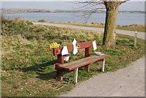 TQ8068 : Commemorative Bench by the Saxon Shore Way, Sharps Green Bay by N Chadwick