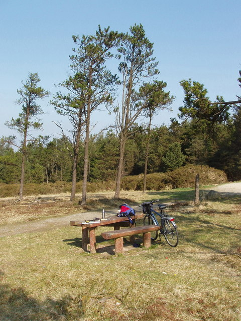 Picnic site on Forth Mountain