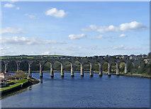 NT9953 : Royal Border Bridge, Berwick-upon-Tweed by Christine Matthews